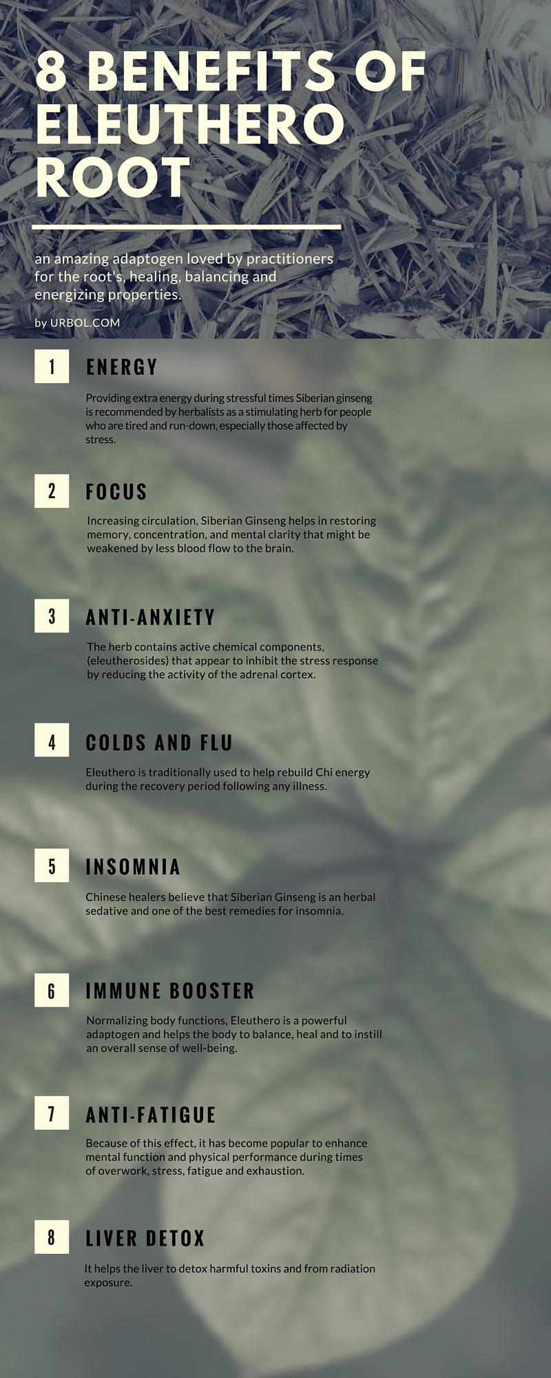 eleuthero-root-infographic