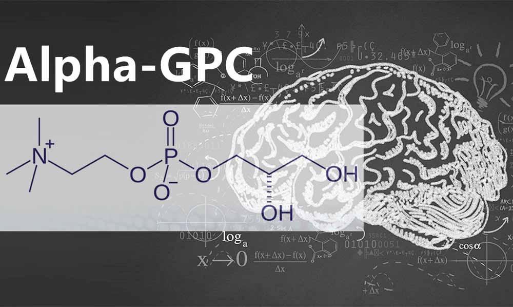 alpha-gpc-big